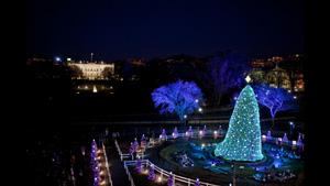 2010年度のナショナルクリスマスツリー。後方にホワイトハウスが見える。 (Official White House Photo by Lawrence Jackson)