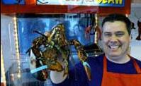 メイン州スカーバラの店主ピーター・ウォルシュ (Peter Walsh)が、水槽から取り出したロブスターを見せる。メイン産ロブスターは世界的に有名。(AP/WWP)