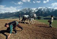 wwwj-ejournals-agriculture6j