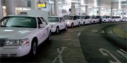 ボルティモア・ワシントン国際空港で、乗客を待つタクシーの列(Courtesy of Maggie Sliker)