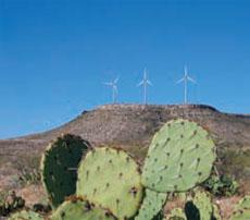 セリーズのパートナーであるアメリカン・エレクトリック・パワー(AEP)社はテキサス州西部に「デザートスカイ」風力発電基地を所有している。定格1.5メガワットの風力タービン107基が約38.4km2の面積に点在する。セリーズ会長のミンディ・ラバーによれば、AEPは「石炭や石炭から得られる電力を売る以上に、エネルギー効率を売り始めている」という (Wikipedia Commons)