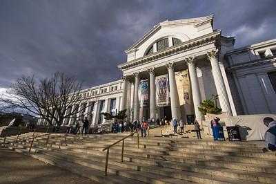 Virtual America:国立自然史博物館